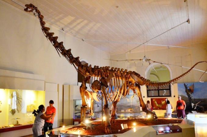 Pesquisa mostra que Museu Nacional recebia mais visitantes de classes populares que a maioria das instituições de ciência. (Foto: Site G1)