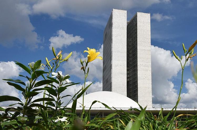 Nas eleições de outubro o total de 352 candidatos estão de olho no Senado. (Foto: (Foto:Pillar Pedreira/Agência Senado))