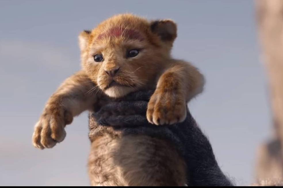 A adaptação de Rei Leão chegou recentemente aos cinemas (Foto: Reprodução)