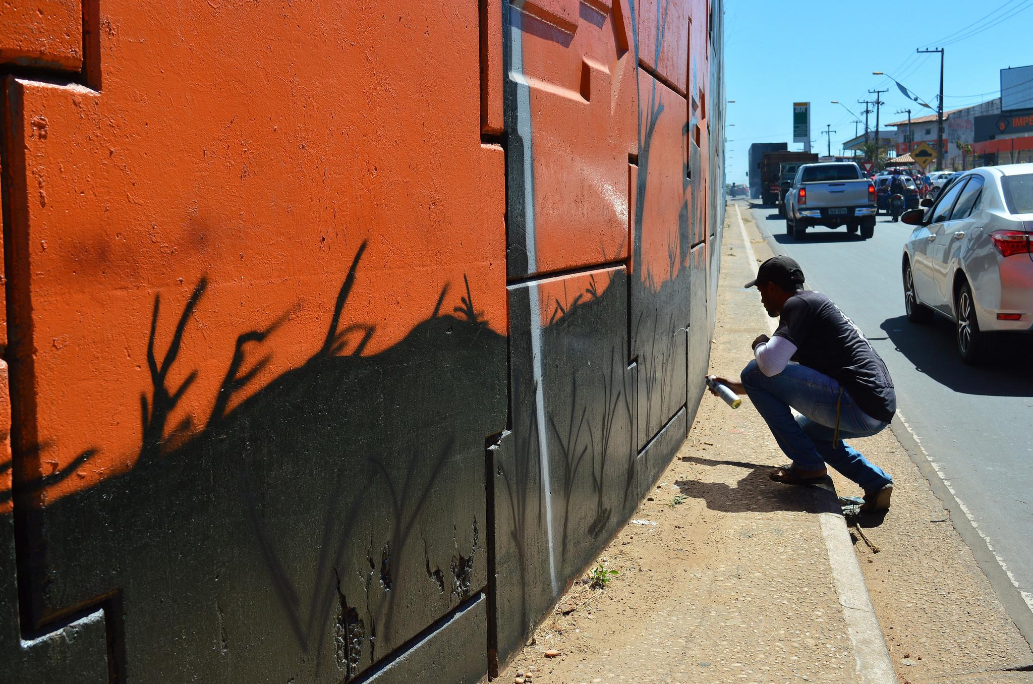 Ruas, praças, muros e espaços públicos da cidade vem sendo coloridos (Foto: Reprodução)